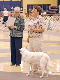 "Donna Dodson with Denise Gordon and ""Wolf"" in the Parade of Titleholders, 2005 National Specialty."